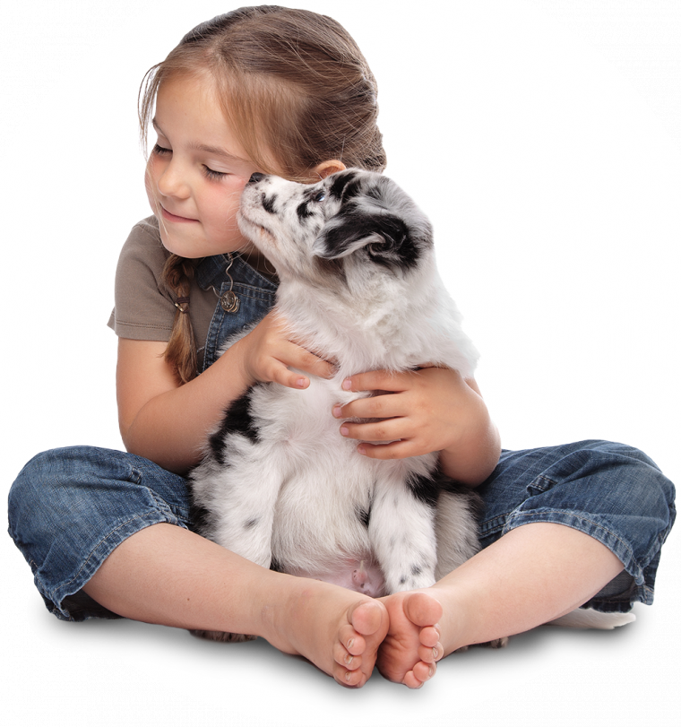 kisspng-stock-photography-puppy-girl-dog-cuteness-5ceab00e107e32.1023358215588843660676.png